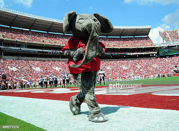 A mascot of the Alabama Crimson Tide Cheerleaders performs during the game against the Florida Atlantc Owls on September 6 2014 at BryantDenny...