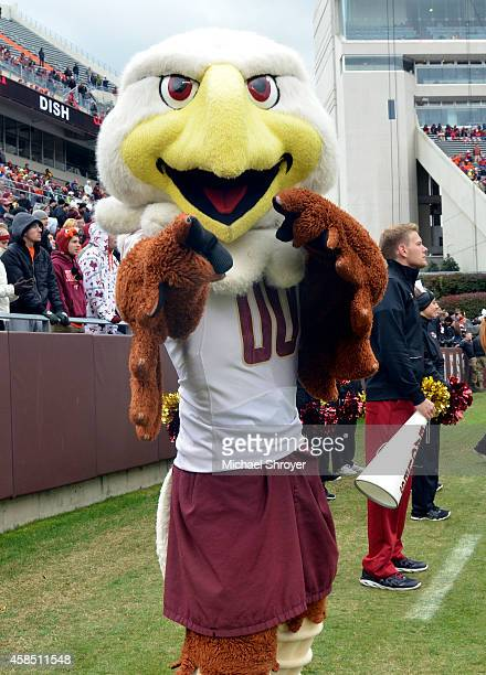 Mascot of the Boston College Eagles 'Baldwin the Eagle' performs during the game against the Virginia Tech Hokies at Lane Stadium on November 1 2014...