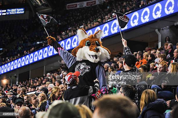 Mascot of the Calgary Hitmen Farley the Fox rallies the fans during a break in play against the Regina Pats during a WHL game at Scotiabank...