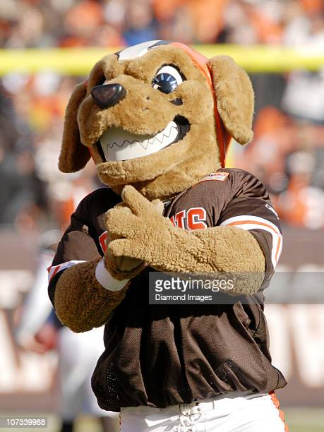 A mascot of the Cleveland Browns claps during pregame activities prior to a game with the Carolina Panthers on November 28 2010 at Cleveland Browns...