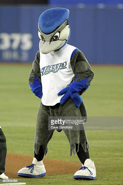 ACE mascot of the Toronto Blue Jays stands on field before the game against the Boston Red Sox at the Rogers Centre on April 6 2008 in Toronto Ontario