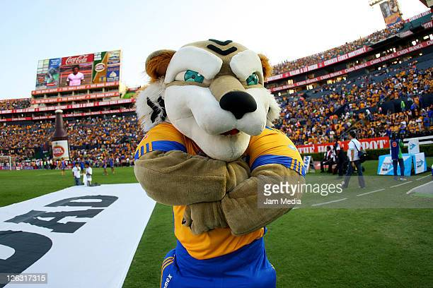 Mascot of Tigres before their match against Jaguares as part of the Apertura 2011 Tournament in the Mexican Football League at Universitario Stadium...