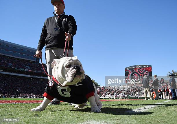 Mascot UGA X with his owner Charles Seiller before the game between the UL Lafayette Ragin' Cajuns and the Georgia Bulldogs on November 2016 at...