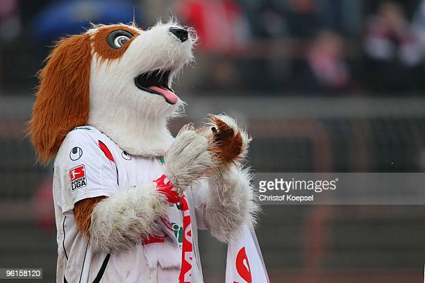 Mascot Underdog of Oberhausen pose prior to the Second Bundesliga match between RW Oberhausen and FC Augsburg at the Niederrhein Stadium on January...