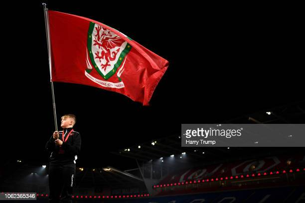 A mascot waves a gaint Wales National Team flag inside the stadium prior to the UEFA Nations League Group B match between Wales and Denmark at...