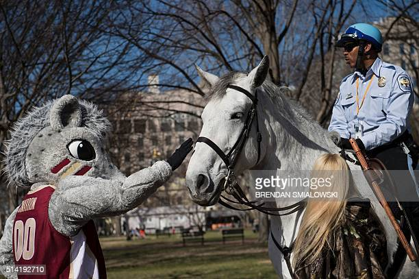 ACC mascots advertise the upcoming ACC Basketball Tournament championship near the White House March 7 2016 in Washington DC / AFP / Brendan...