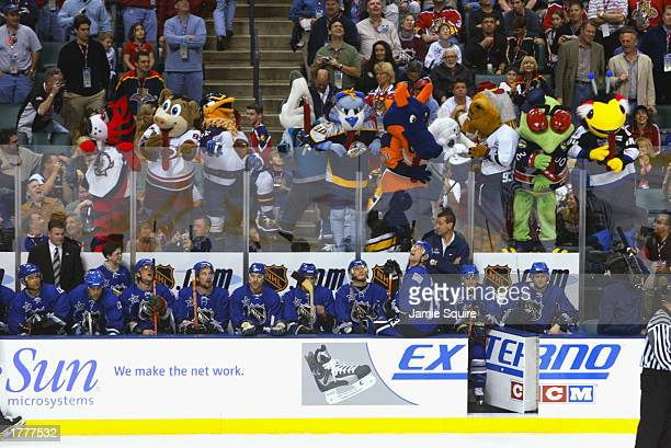 Mascots of the Sabres Hurricanes Thrashers Sharks Predators Islanders Mighty Ducks Flames Blue Jackets and Lightning stand behind the bench of the...