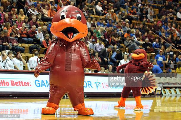 Mascots of the Virginia Tech Hokies perform prior to a game against the Duke Blue Devils at Cassell Coliseum on February 21 2013 in Blacksburg...