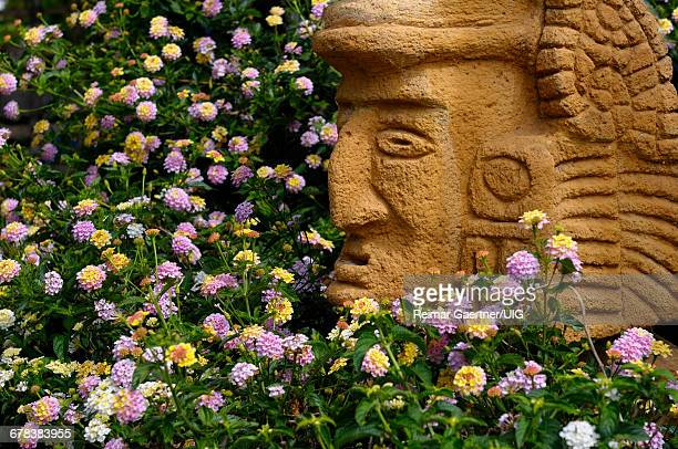 mask and flowers - aztec mask stock pictures, royalty-free photos & images