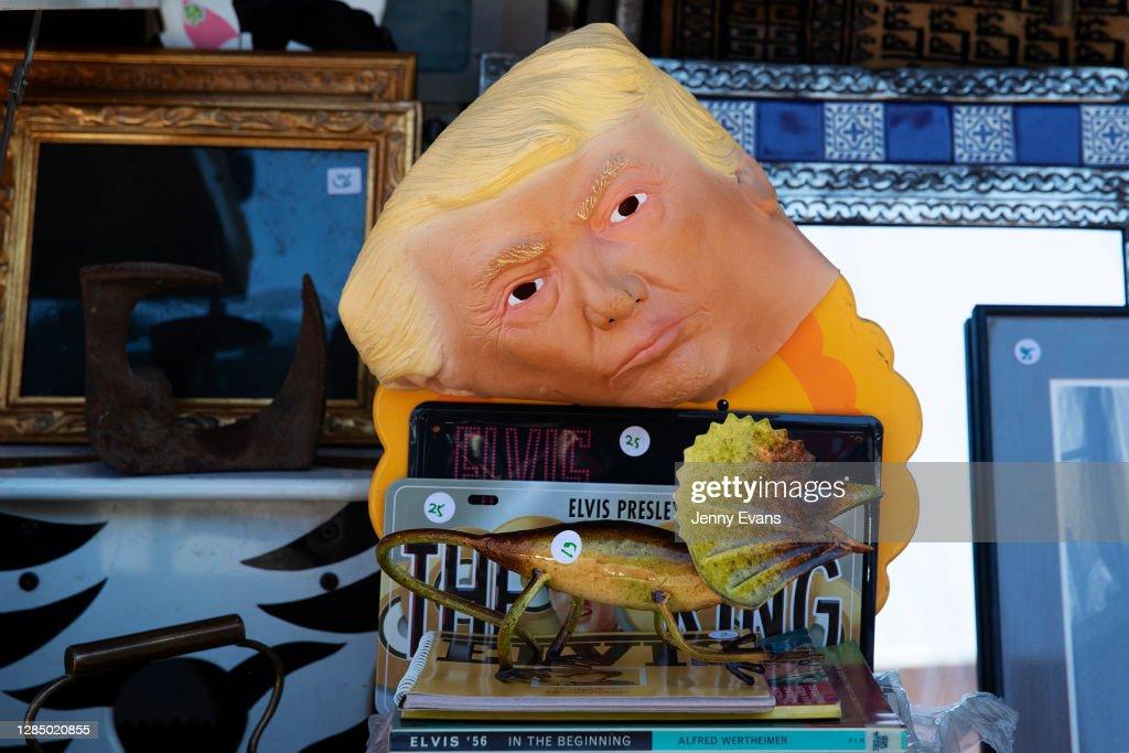 Artist Scott Marsh Creates Mural Of Donald Trump As A Turtle Following U.S. Election : ニュース写真