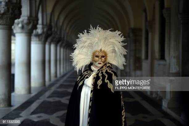 TOPSHOT A masked reveller wearing a traditional carnival costume stands in St Mark Square during Venice's Carnival on January 28 2018 / AFP PHOTO /...