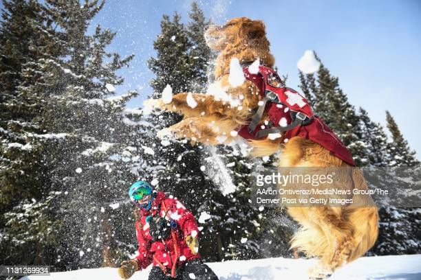 Mason and Abby Seymour play in the snow after an avalanche scenario training at Copper Mountain on Wednesday February 20 2019 Mason is a fouryearold...
