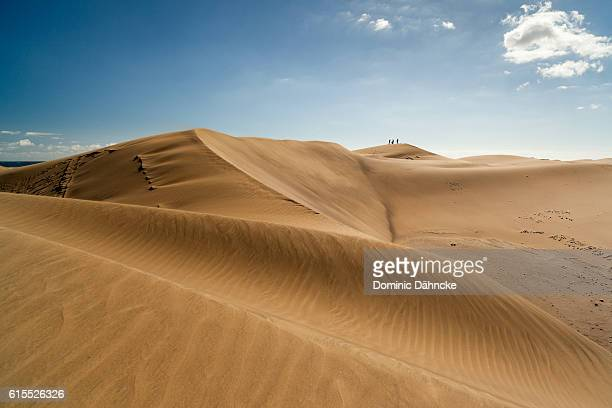 maspalomas' dunes (gran canaria. canary islands. spain) - grand canary stock pictures, royalty-free photos & images