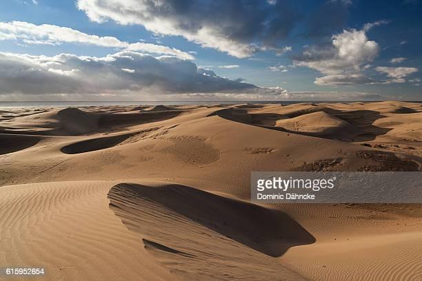 maspalomas' dunes (gran canaria. canary islands. spain) - dähncke fotografías e imágenes de stock