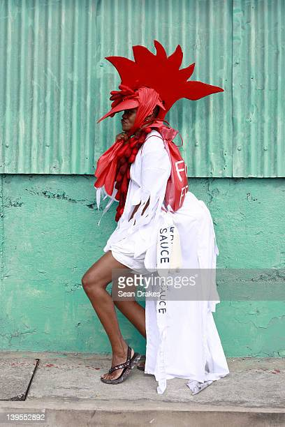 A masquerader from the band Fowl Party poses at Carnival on February 21 2012 in Port of Spain Trinidad