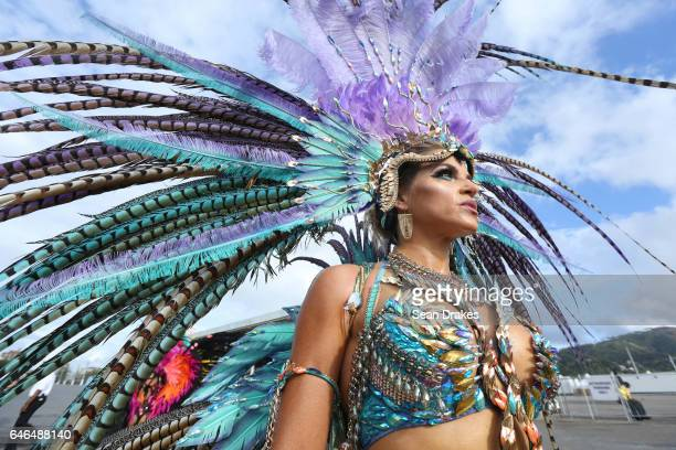 Masqueraders with Harts present 'Ultra Violet Jungle' during Trinidad Carnival 2017 at the Queen's Park Savannahon on February 28 2017 in Port of...