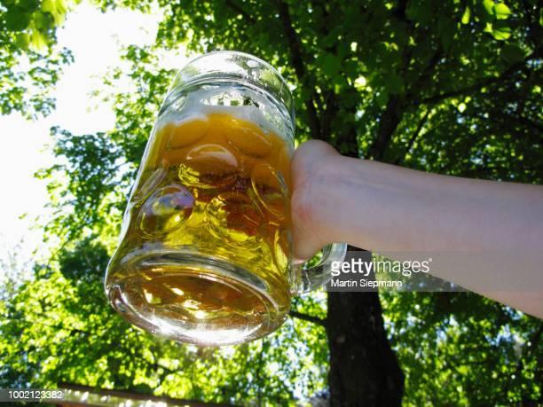 A Mass beer, two litre beer glass, Fischbach, Upper Bavaria, Bavaria, Germany