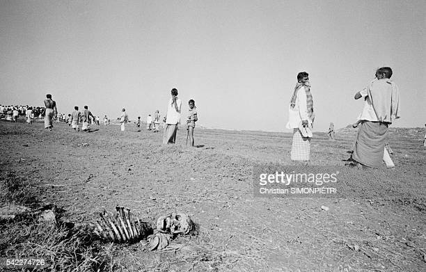 Mass grave containing the bodies of Bengali intellectuals killed by Razakars in a clay pit near Dhaka during the war for Bangladeshi independence |...