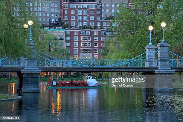 Massachusetts, Boston, Boston public garden at dawn