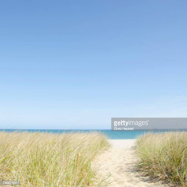 USA, Massachusetts, Nantucket Island, Beach path