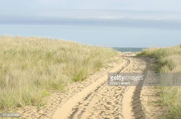 USA, Massachusetts, Nantucket, Path with tyre track