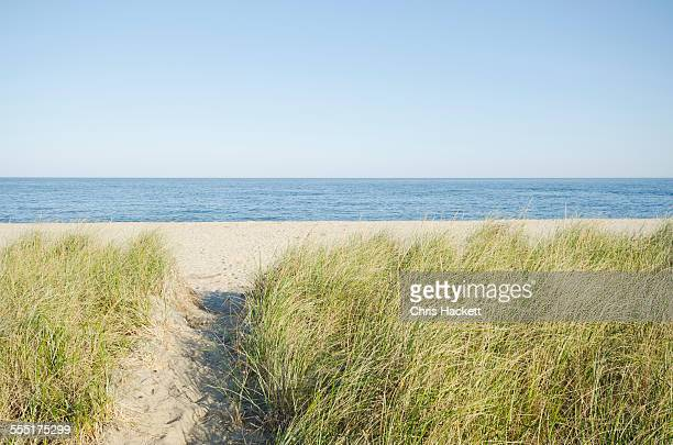 USA, Massachusetts, Nantucket, Siasconset, Path leading to beach