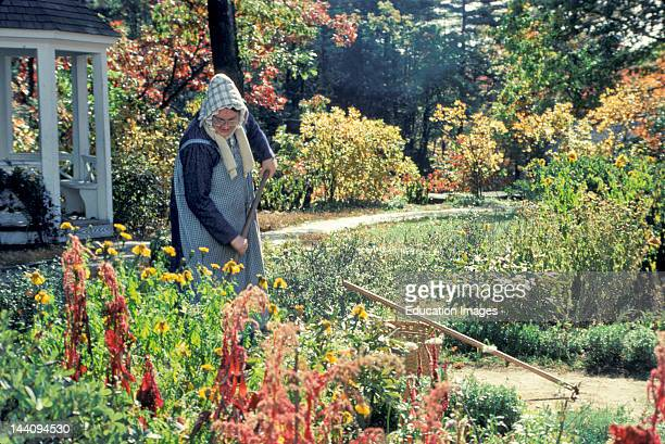 Massachusetts Old Sturbridge Village Woman In 19Th Century Dress Gardening