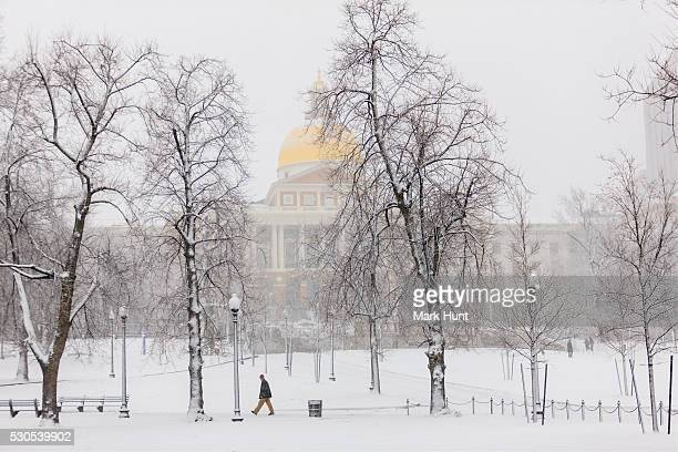massachusetts state house and boston common during blizzard in boston, suffolk county, massachusetts, usa - boston common stock pictures, royalty-free photos & images