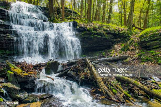 massachusetts-sunderland-gunn brook fallsgunn falss - brook mitchell stock pictures, royalty-free photos & images