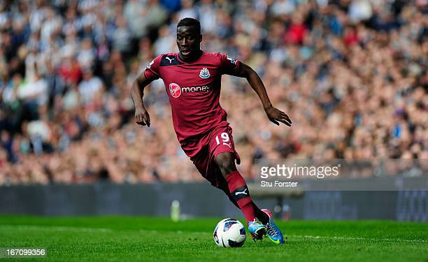 Massadio Haidara of Newcastle in action during the Barclays Premier League match between West Bromwich Albion and Newcastle United at The Hawthorns...