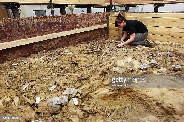 Massengrab Lützen / Archäologen des Landesamtes für archäologie und Denkmalpflege SachsenAnhalt gelang der erste materielle Nachweis von aus der...