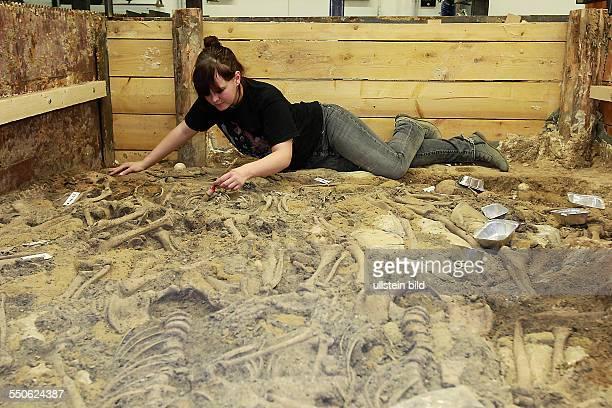 Massengrab Lützen / Archäologen des Landesamtes für archäologie und Denkmalpflege Sachsen Anhalt gelang der erste materielle Nachweis von aus der...