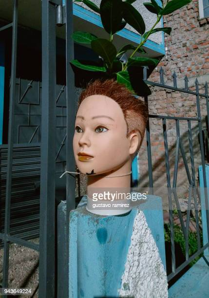 masseter head of mannequin with plants on his head