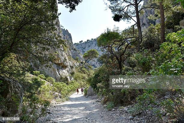 Massif des Calanques walkway with spare vegetation Massif des Calanques France Europe