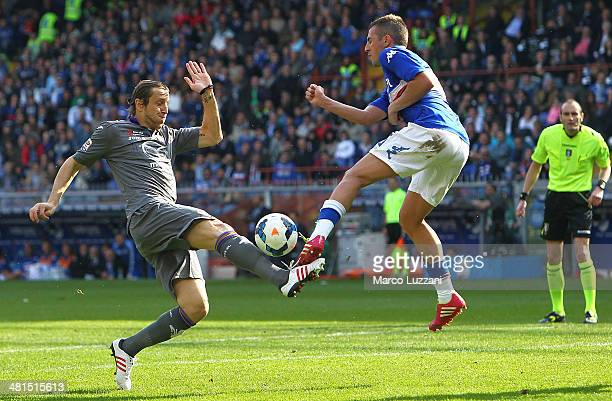 Massimo Ambrosini of ACF Fiorentina competes for the ball with Nenad Krsticic of UC Sampdoria during the Serie A match between UC Sampdoria and ACF...