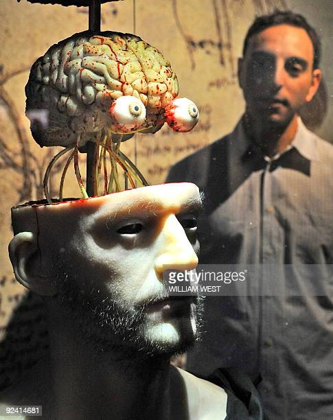 Massimo Ingrosso inspects a lifelike dissection of a head to show the head and cranial nerves at a Leonardo Da Vinci exhibition titled 'Anatomy to...