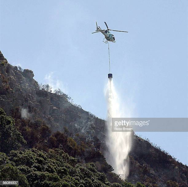 Massive damage from fire is seen from the side of the Mount as Fire crews from Rotorua and Hamilton drop monsoon buckets trying to dampen the fire...