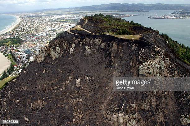 Massive damage from fire is seen on the side of the Mount as Fire crews from Rotorua and Hamilton were called in to try and fight the blaze that...