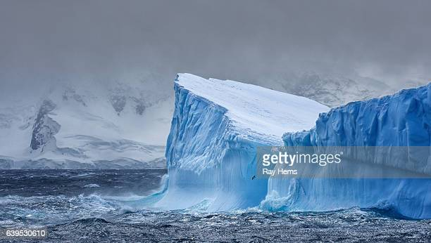 massive iceberg floating in antarctica - ijsschots stockfoto's en -beelden
