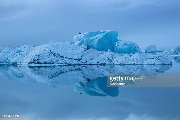 a massive iceberg on jokulsarlon iceberg lagoon in southern iceland. - alex saberi stock pictures, royalty-free photos & images