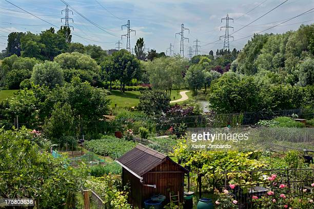 Massive power lines running over vegetable gardens on June 11 2005 in Sarcelles a Paris suburb France