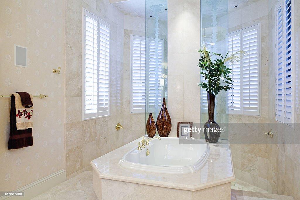 Master Bath : Stock Photo