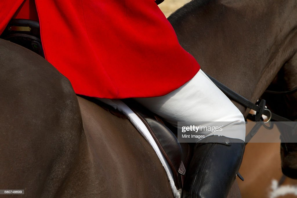 A Master of Foxhounds in a traditional hunting coat, on horseback. : Stock Photo