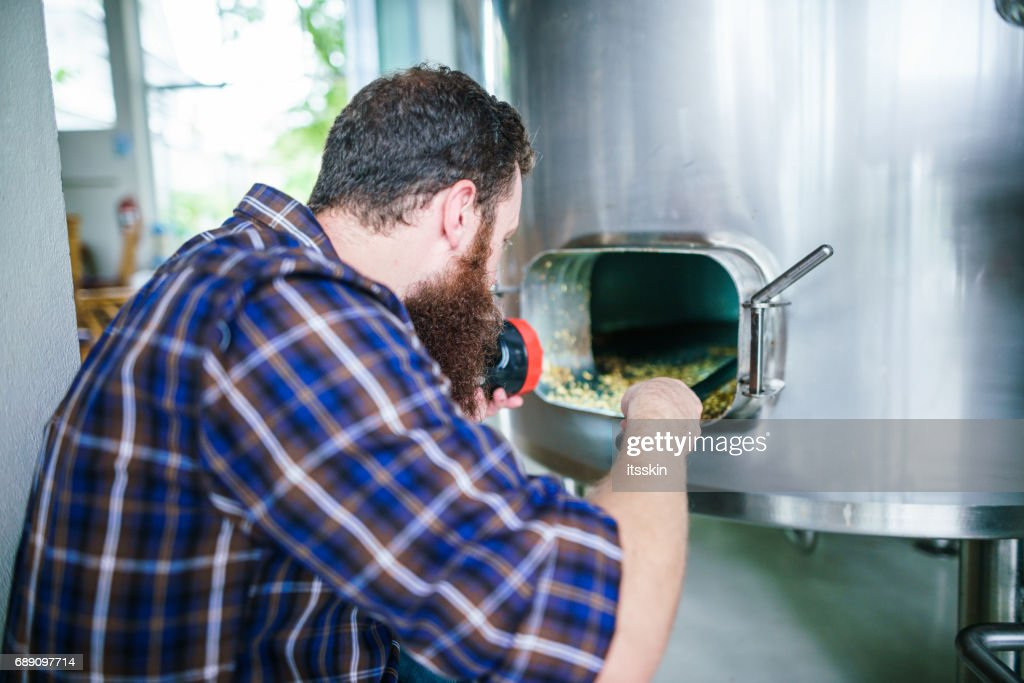 Master works in the brewery: barley quality control : Stock Photo