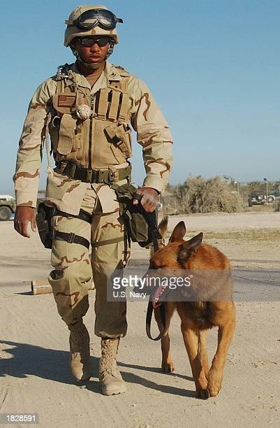 MasteratArms 2nd Class Phillip Darity a US Navy dog handler patrols the streets of Camp Patriot with his dog Argo Argo who is trained as a bomb and...