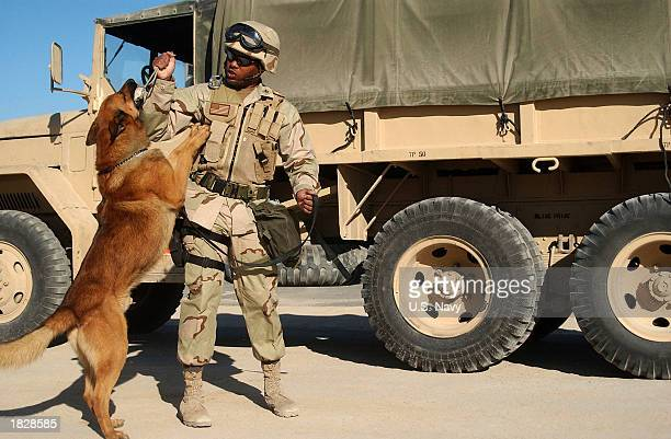 MasteratArms 2nd Class Phillip Darity a US Navy dog handler works on training techniques with his dog Argo Argo who is trained as a bomb and patrol...