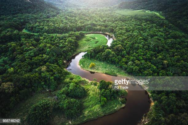 mata atlantica - atlantic forest in brazil - aerial view stock pictures, royalty-free photos & images