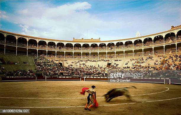 Matador facing off with bull, blurred motion