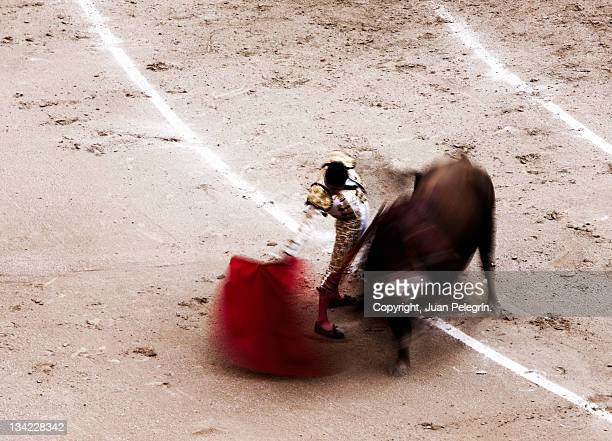 Matador fighting in ring