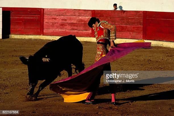 Matador in Bullfight